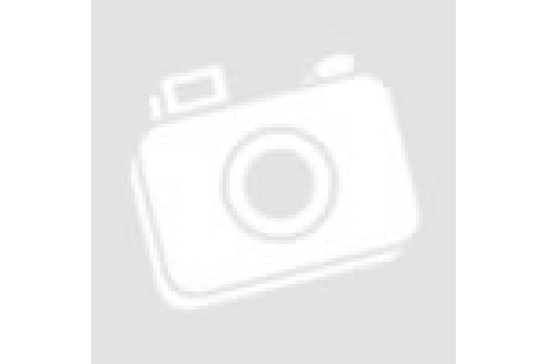 """Схема для вышивки иконы бисером """"Св. Мц. София"""""""